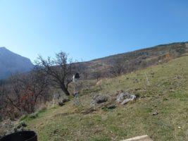[RÉSEAU] 2 stations météo dans la vallée de la Tinée